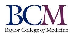 BCM Researchers Discover Overfed Newborn Mice Retained Obesity As Adults