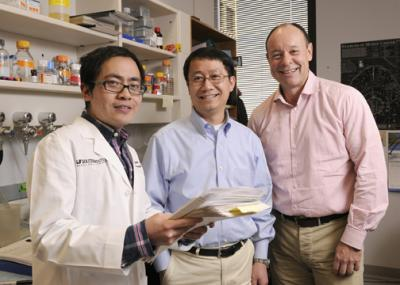 UT Southwestern Researchers Demonstrate Cancer Cure Via Mouse Model of Human Cancer