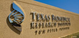 NIH-Funded Texas Biomed Study Links Brain Aging To Genes