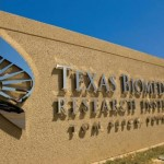 Robert Gracy Appointed Interim President and CEO of Texas Biomed