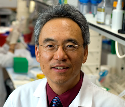 Leukemia & Lymphoma Society Name MD Anderson Researcher As Quest for Cures Grant Program Recipient