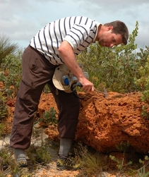 UT Austin Researcher And Colleagues Find Symbiotic Fungi Inhabiting Plant Roots Have Major Impact On Atmospheric Carbon