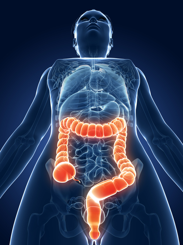 Antibiotics Metronidazole and Quinolones Associated with New-Onset Inflammatory Bowel Disease