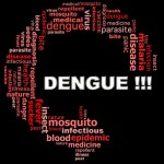 Vaccine Against Dengue May Prevent Future Outbreaks
