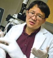 UT Arlington Bioengineer Developing New Nanoparticle System To Shore Up Damaged Arterial Walls