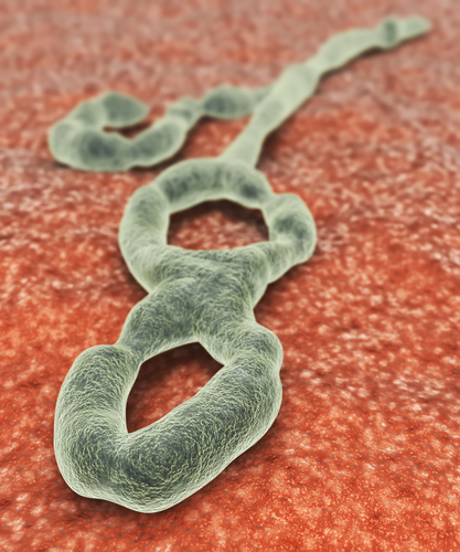 First U.S.-Diagnosed Ebola Case Treated at Texas Health Presbyterian in Dallas; ZMapp Drug Development Fast-Tracked