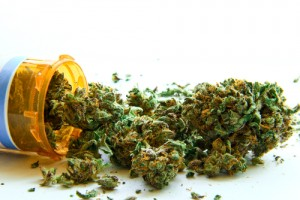 Multiple Sclerosis Marijuana