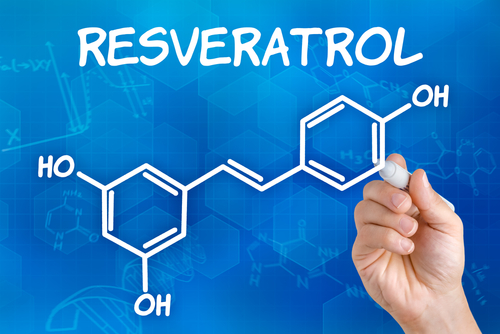 Oral-Transmucosal Delivery of Trans-Resveratrol in Humans Focus of Work by San Antonio-Based Wilmore Labs