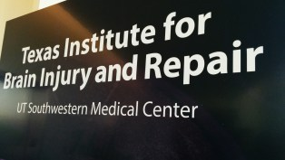 Brain Injury and Repair Institute Launched At UT Southwestern Through State-Supported Funds
