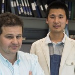 Rice University Researchers Quantify Reactions Between 'Building Block' Proteins In The Body