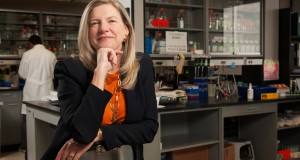 Texas A&M IBT's Cheryl Walker Joins CPRIT's University Advisory Committee