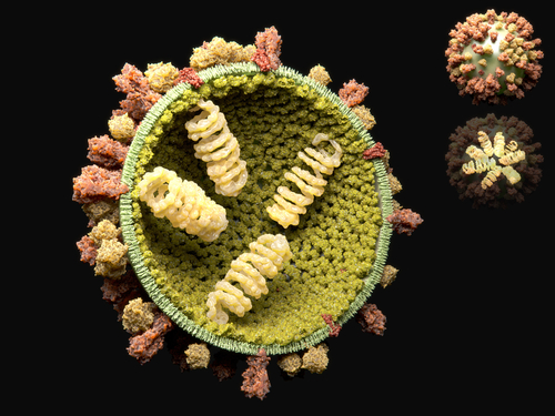 Texas Advanced Computing Center, Peers Develop Computational Models to Predict Influenza A Virus Mutations