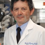 BCM Cell and Gene Expert Malcolm Brenner Granted Pioneer Award by Human Gene Therapy Journal