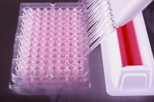 Genetic Screening for Breast Cancer