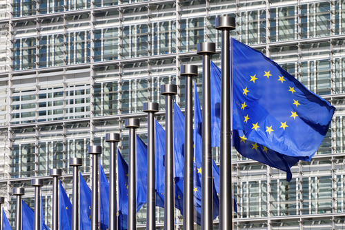 Translating and Exporting Biotech Products Into the EU
