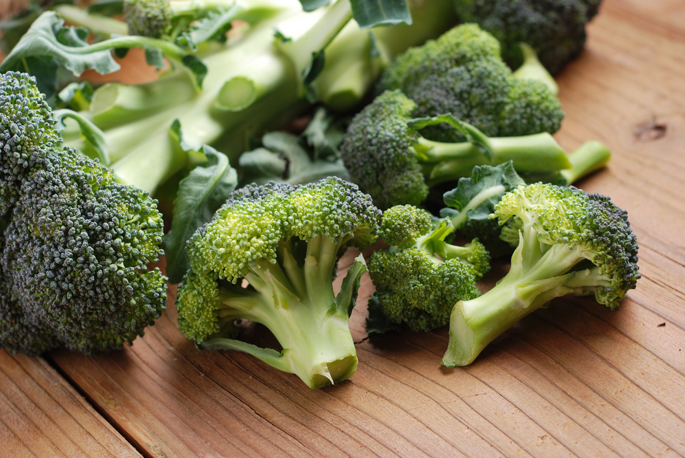 Protein Present in Broccoli Proven Beneficial for Living Healthier, Longer Lives