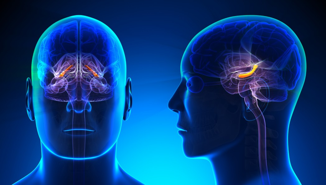 UT Dallas Researcher Defies Theory on Unconscious Memory Processing
