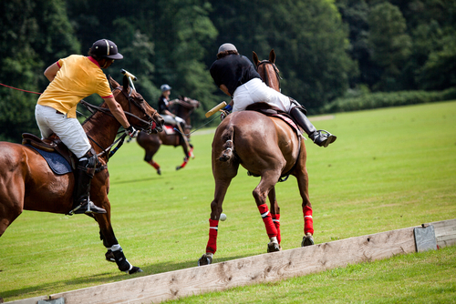Polo on the Prairie Fundraising Event to Support MD Anderson Next Saturday