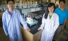UT Arlington Team Develops New Solar Energy Storage Cell For Nighttime Conversion