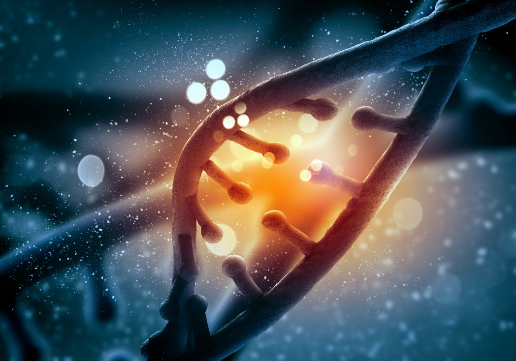 MD Anderson Study Points To Involvement of Epidermal Growth Factor Receptor In Colorectal Cancer Recurrence
