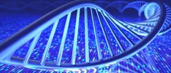 MD Anderson DNA Study Reveals New Insights in Colon Cancer, May Help Personalize Treatment Options
