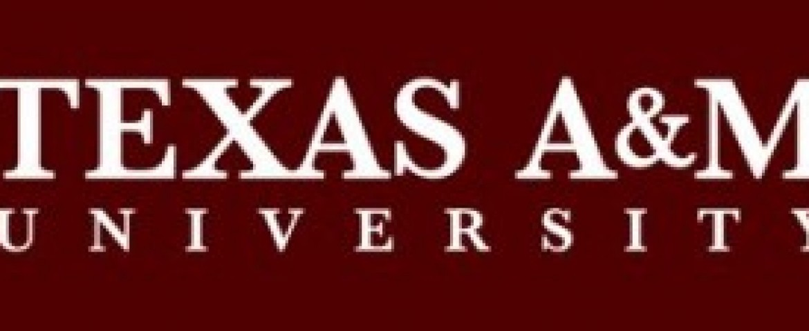 Texas A&M-CAPES Program Open for Brazil/USA Research Applications