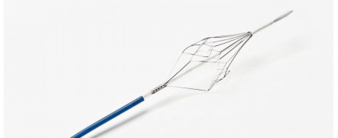 Texas Firm's BiO2 Medical Inc. Angel Catheter Device Study Receives FDA Go Ahead