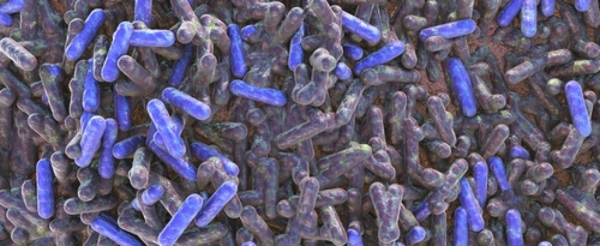 IFN-γ Found to Help Clear Lethal Bacteria in Cystic Fibrosis Infections
