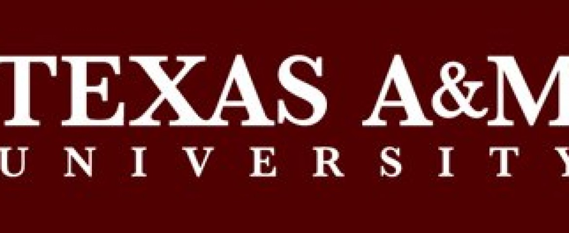 Texas A&M and Brazilian Universities Receive Funds For Joint Research Projects
